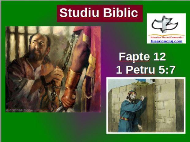 fpate12slide